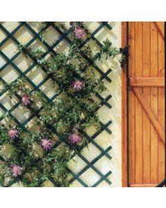 Celosia jardin 1x2mt verde nortene